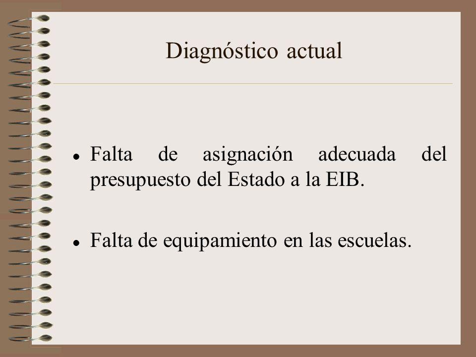 Diagnóstico actual Falta de asignación adecuada del presupuesto del Estado a la EIB. Falta de equipamiento en las escuelas.