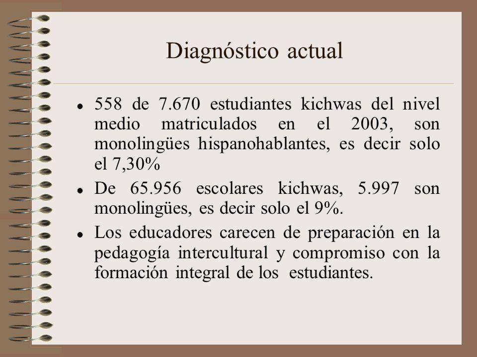 Diagnóstico actual 558 de 7.670 estudiantes kichwas del nivel medio matriculados en el 2003, son monolingües hispanohablantes, es decir solo el 7,30%