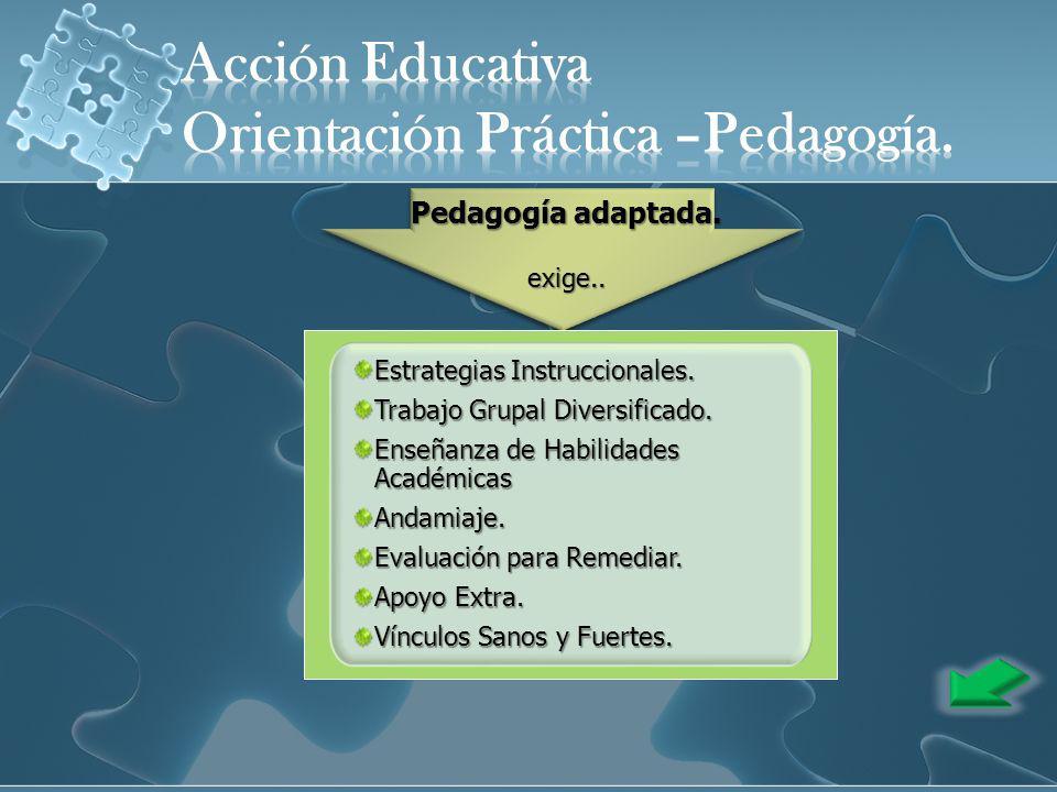 Estrategias Instruccionales. Trabajo Grupal Diversificado. Enseñanza de Habilidades Académicas Andamiaje. Evaluación para Remediar. Apoyo Extra. Víncu