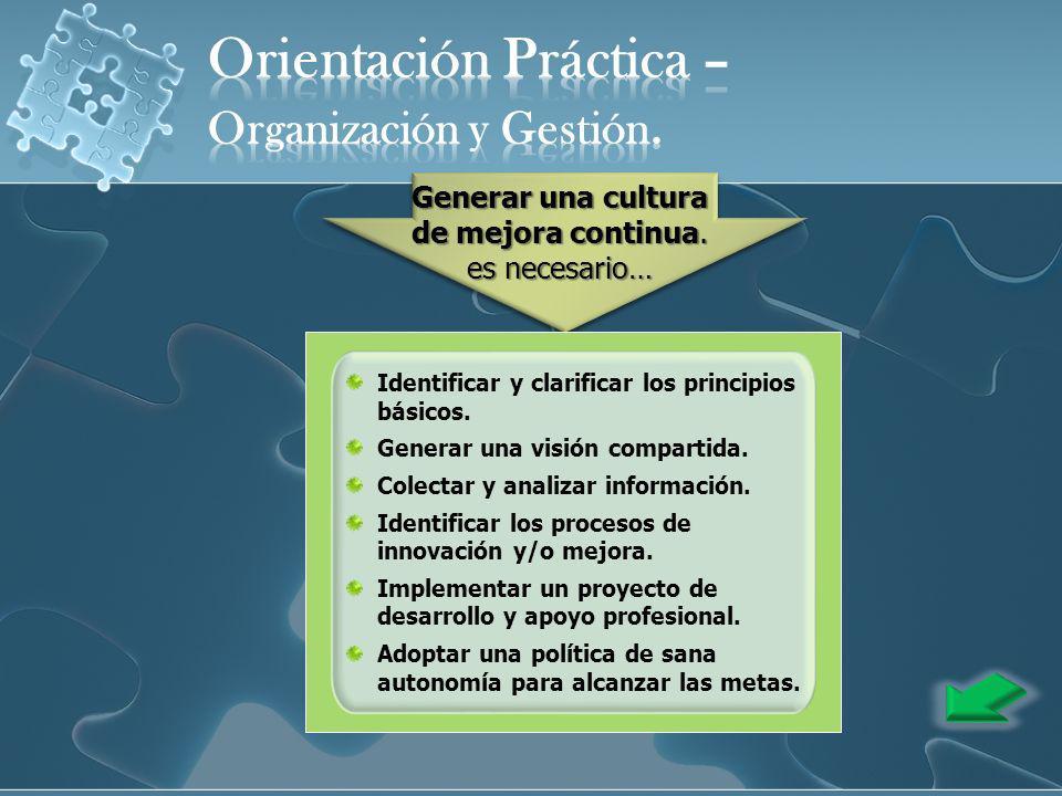 Identificar y clarificar los principios básicos. Generar una visión compartida. Colectar y analizar información. Identificar los procesos de innovació