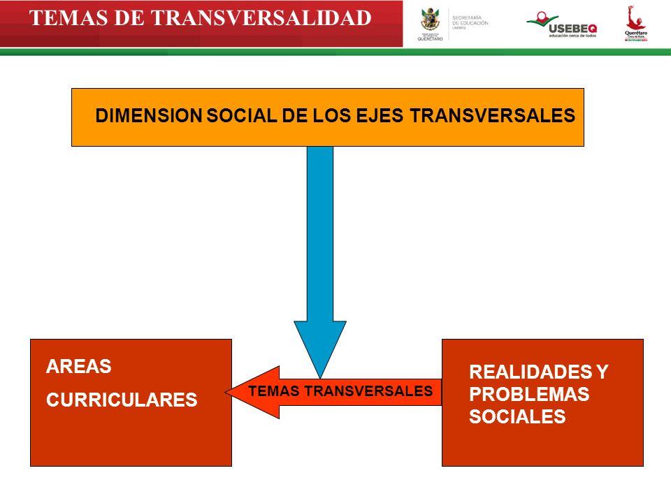 TEMAS DE TRANSVERSALIDAD DIMENSION SOCIAL DE LOS EJES TRANSVERSALES TEMAS TRANSVERSALES AREAS CURRICULARES REALIDADES Y PROBLEMAS SOCIALES