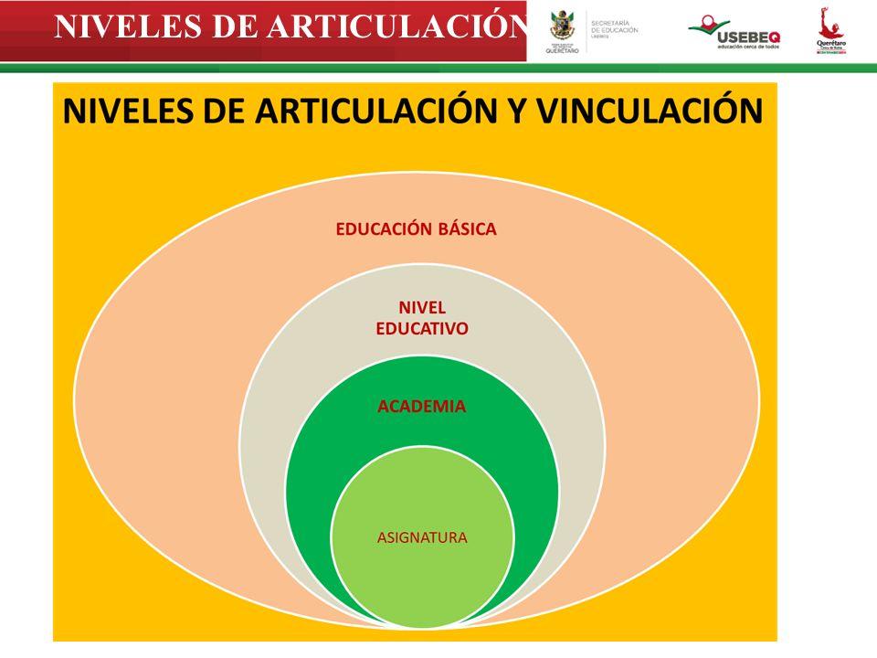 NIVELES DE ARTICULACIÓN