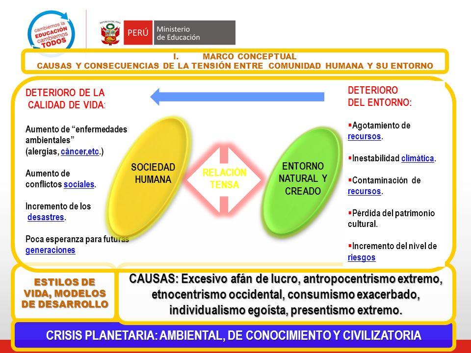 I.MARCO CONCEPTUAL CAUSAS Y CONSECUENCIAS DE LA TENSIÓN ENTRE COMUNIDAD HUMANA Y SU ENTORNO DETERIORO DE LA CALIDAD DE VIDA : Aumento de enfermedades