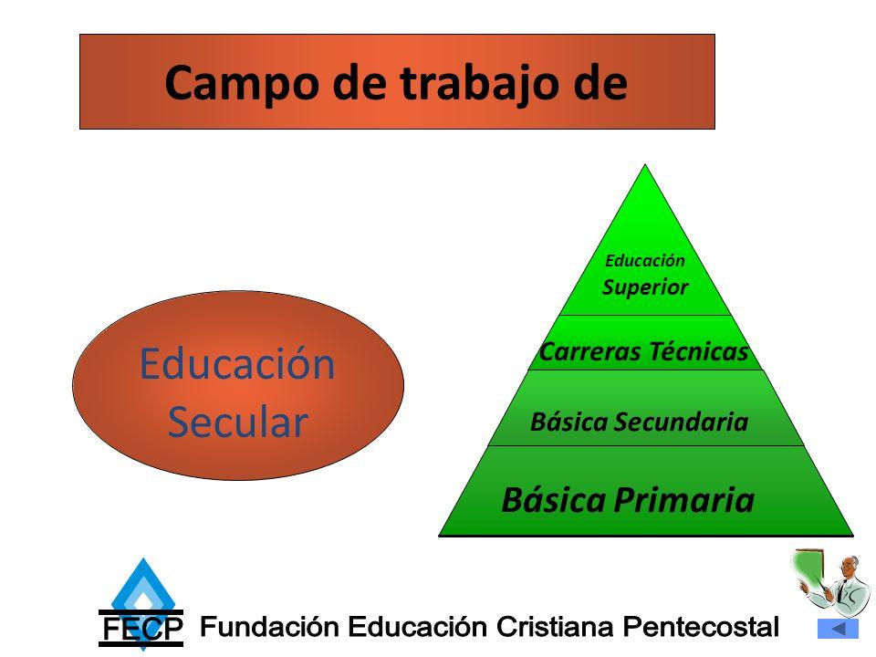 Campo de trabajo de Educación Secular Básica Secundaria Carreras Técnicas Educación Superior Básica Primaria