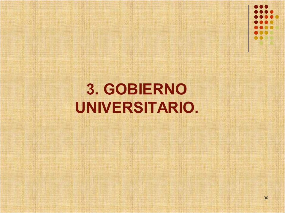 3. GOBIERNO UNIVERSITARIO. 36