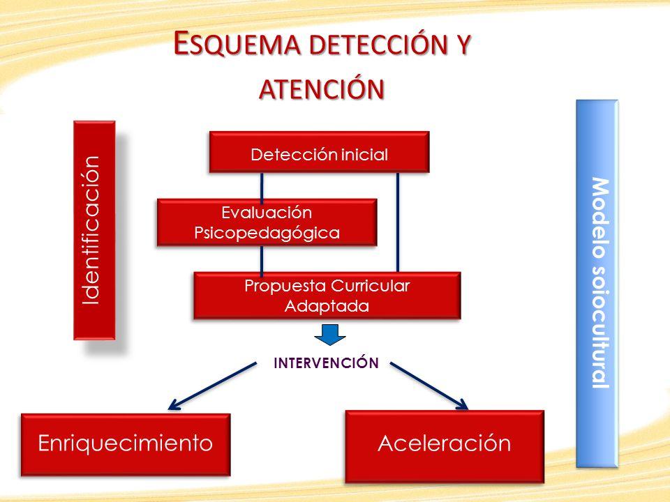 E SQUEMA DETECCIÓN Y ATENCIÓN Detección inicial Evaluación Psicopedagógica Evaluación Psicopedagógica Propuesta Curricular Adaptada Enriquecimiento Ac