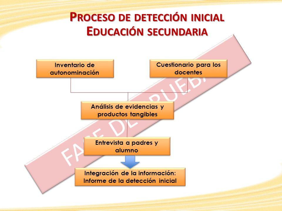 FASE DE PRUEBA P ROCESO DE DETECCIÓN INICIAL E DUCACIÓN SECUNDARIA Inventario de autonominación Cuestionario para los docentes Análisis de evidencias