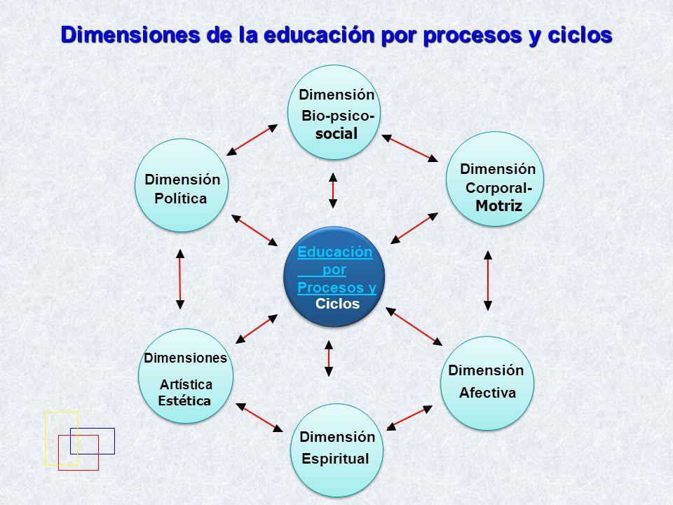 Dimensiones de la educación por procesos y ciclos Dimensiones Artística Estética Dimensión Política Dimensión Bio-psico- social Educación por Procesos