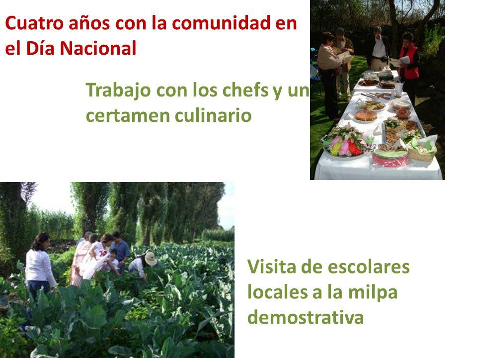 Trabajo con los chefs y un certamen culinario Visita de escolares locales a la milpa demostrativa Cuatro años con la comunidad en el Día Nacional