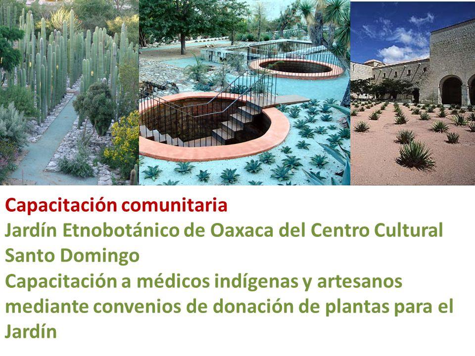 Capacitación comunitaria Jardín Etnobotánico de Oaxaca del Centro Cultural Santo Domingo Capacitación a médicos indígenas y artesanos mediante conveni