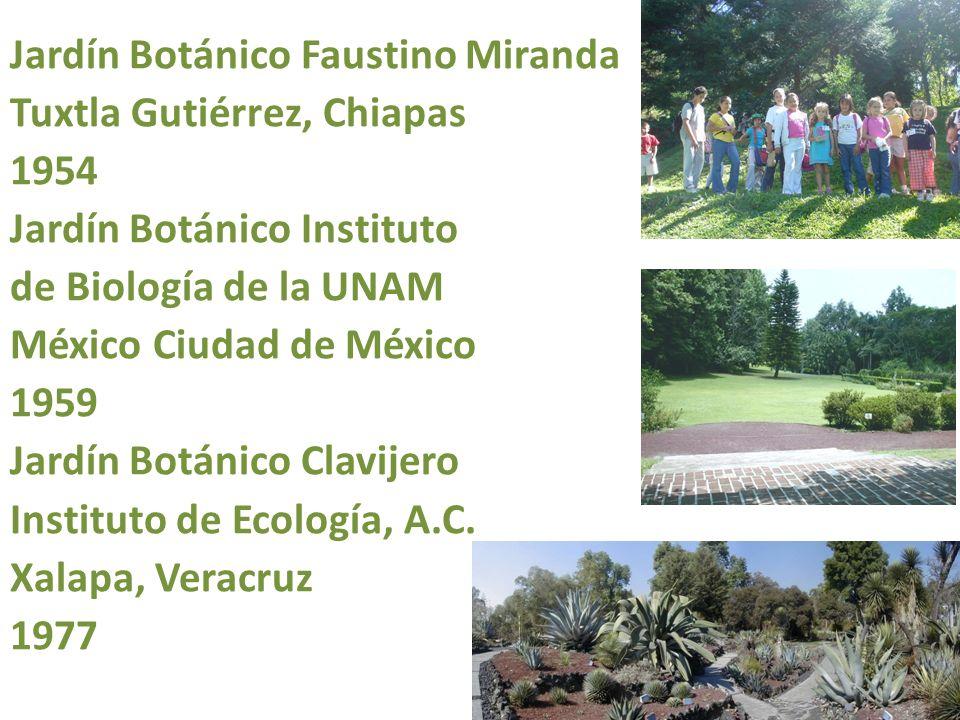 Jardín Botánico Faustino Miranda Tuxtla Gutiérrez, Chiapas 1954 Jardín Botánico Instituto de Biología de la UNAM México Ciudad de México 1959 Jardín B