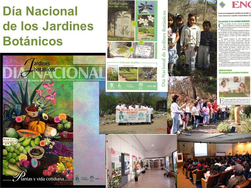 En los años 80 consolida un equipo de trabajo Edelmira Linares Fue el primer jardín botánico en México en contar con un área de educación Inspiración para otros jardines de México y Latinoamérica Jardín Botánico del Instituto de Biología de la UNAM