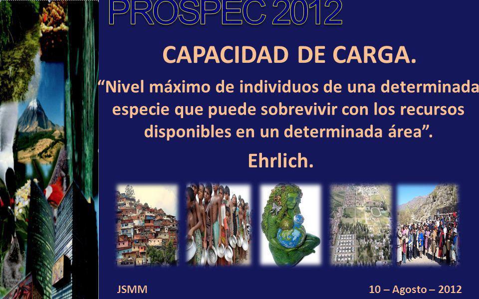 JSMM10 – Agosto – 2012 CAPACIDAD DE CARGA.