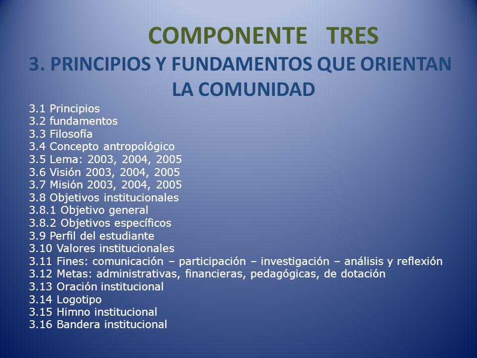 COMPONENTE DOCE 12.