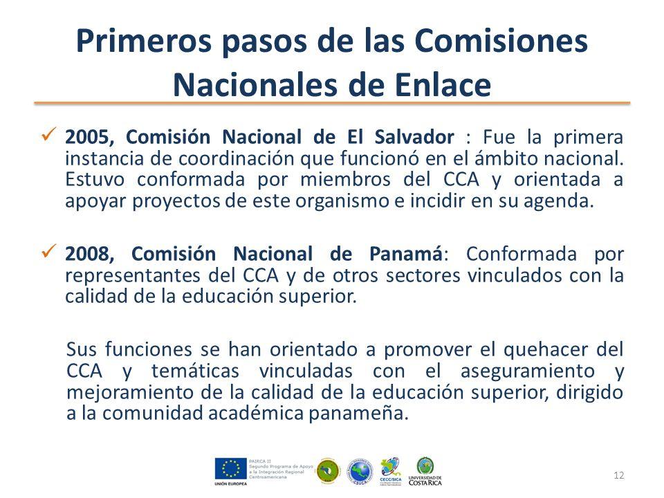 Primeros pasos de las Comisiones Nacionales de Enlace 2005, Comisión Nacional de El Salvador : Fue la primera instancia de coordinación que funcionó en el ámbito nacional.