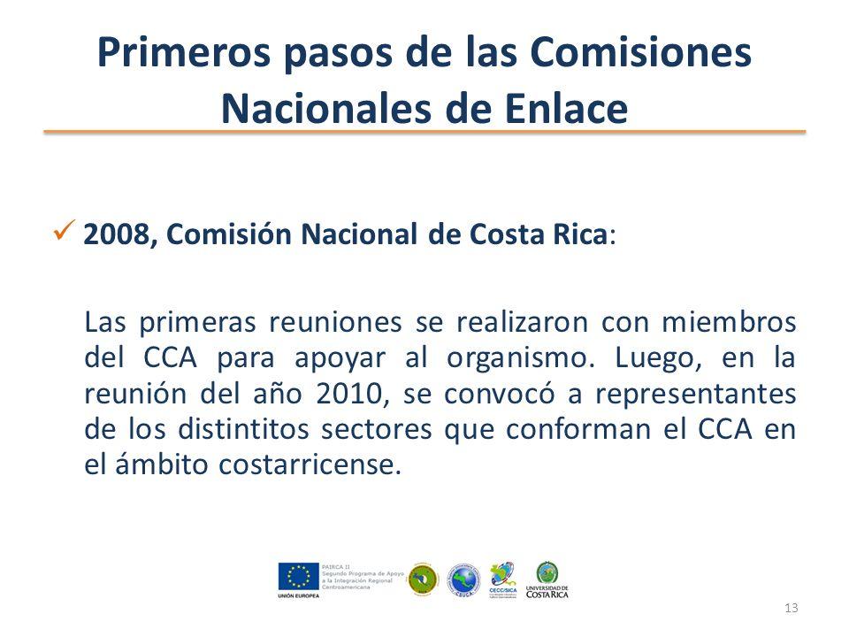 Primeros pasos de las Comisiones Nacionales de Enlace 2008, Comisión Nacional de Costa Rica: Las primeras reuniones se realizaron con miembros del CCA para apoyar al organismo.
