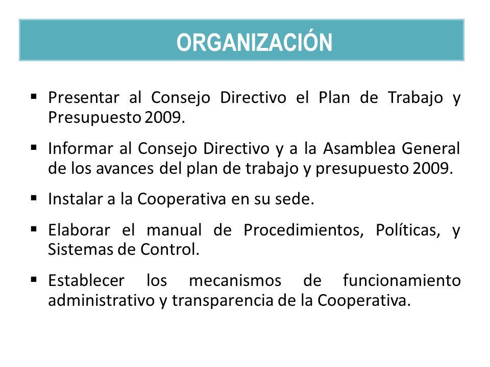 Presentar al Consejo Directivo el Plan de Trabajo y Presupuesto 2009. Informar al Consejo Directivo y a la Asamblea General de los avances del plan de