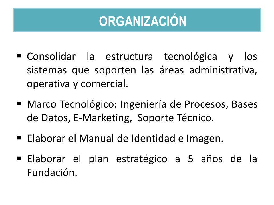 Consolidar la estructura tecnológica y los sistemas que soporten las áreas administrativa, operativa y comercial.