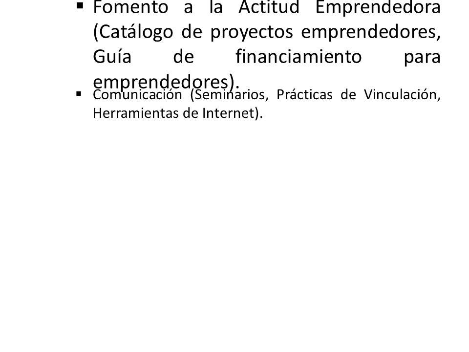 Fomento a la Actitud Emprendedora (Catálogo de proyectos emprendedores, Guía de financiamiento para emprendedores). Comunicación (Seminarios, Práctica