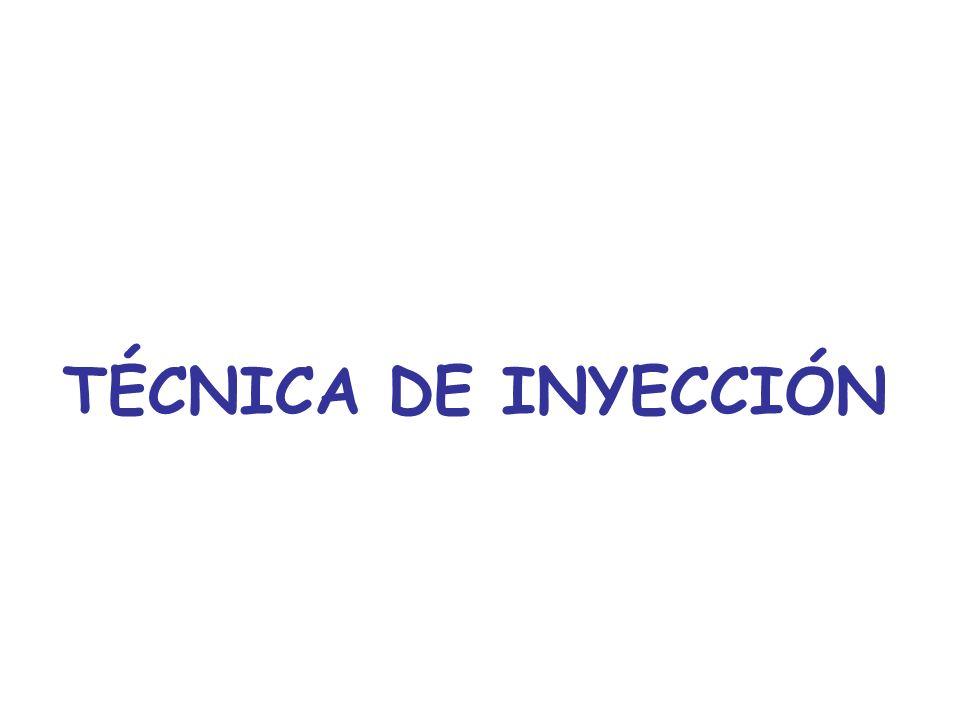 TÉCNICA DE INYECCIÓN