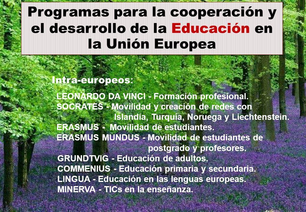 Intra-europeos : LEONARDO DA VINCI - Formación profesional. SOCRATES - Movilidad y creación de redes con Islandia, Turquía, Noruega y Liechtenstein. E