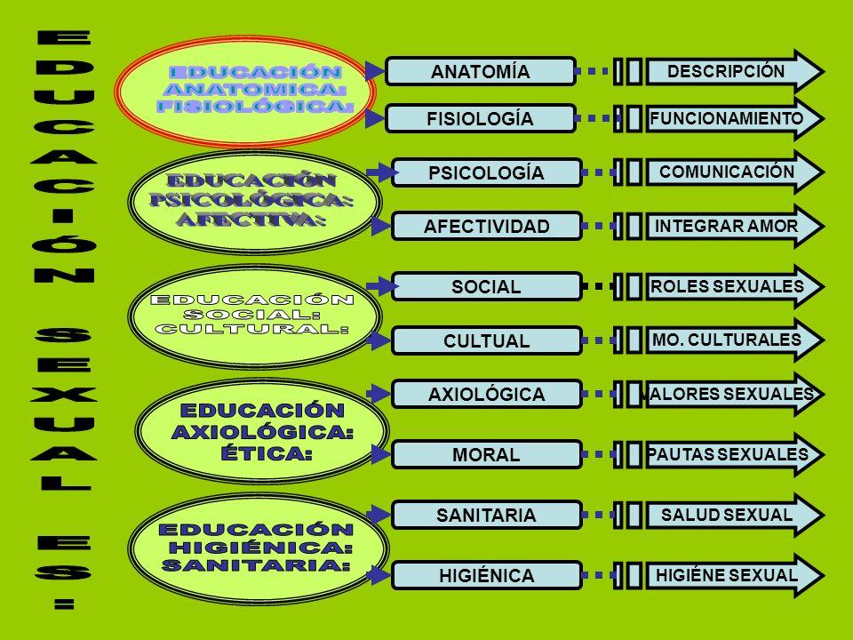 FISIOLOGÍA ANATOMÍA PSICOLOGÍA AFECTIVIDAD CULTUAL SOCIAL AXIOLÓGICA MORAL HIGIÉNICA SANITARIA DESCRIPCIÓN FUNCIONAMIENTO COMUNICACIÓN INTEGRAR AMOR ROLES SEXUALES MO.