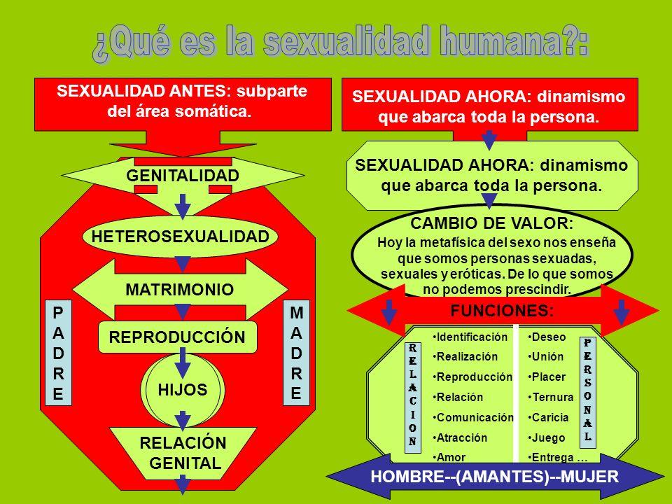 SEXUALIDAD ANTES: subparte del área somática.