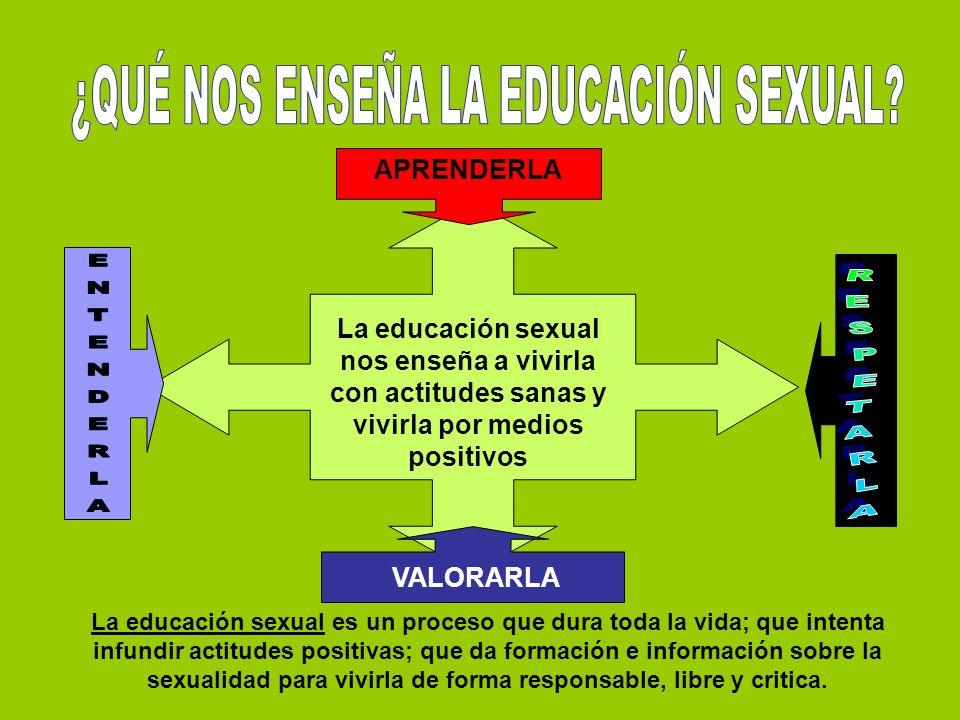 La educación sexual nos enseña a vivirla con actitudes sanas y vivirla por medios positivos APRENDERLA VALORARLA La educación sexual es un proceso que dura toda la vida; que intenta infundir actitudes positivas; que da formación e información sobre la sexualidad para vivirla de forma responsable, libre y critica.