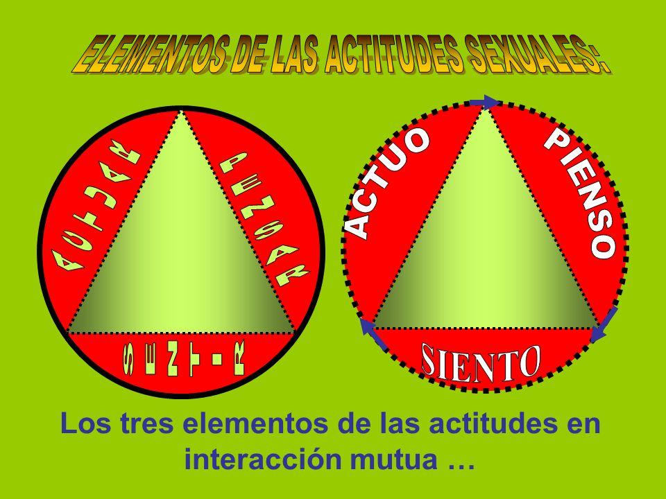 Los tres elementos de las actitudes en interacción mutua …
