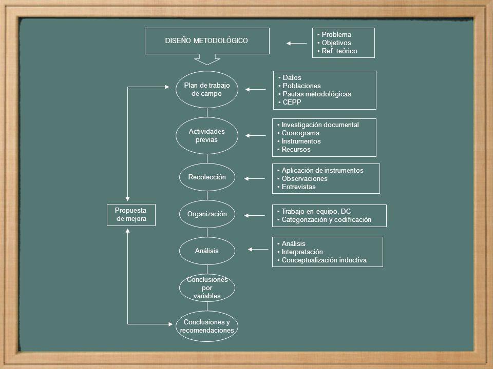 Plan de trabajo de campo Actividades previas Datos Poblaciones Pautas metodológicas CEPP Recolección Organización Análisis Conclusiones por variables