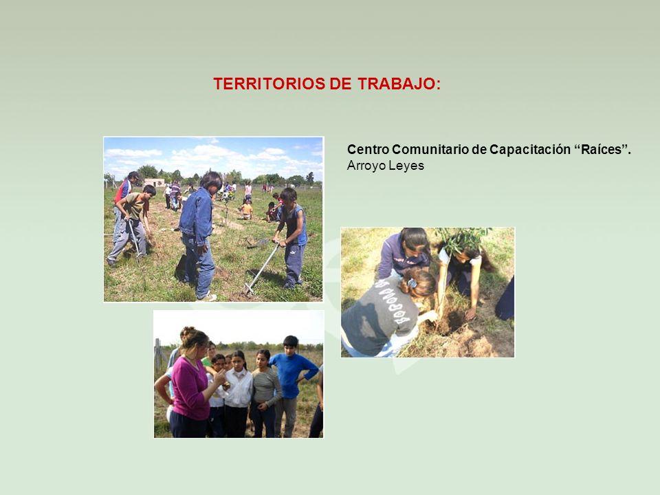 TERRITORIOS DE TRABAJO: Centro Comunitario de Capacitación Raíces. Arroyo Leyes