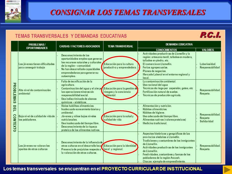 TEMAS TRANSVERSALES Y DEMANDAS EDUCATIVAS P.C.I.