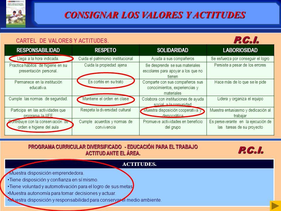 CARTEL DE VALORES Y ACTITUDES.P.C.I.