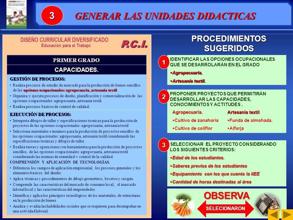 P.C.I.PRIMER GRADO CAPACIDADES.