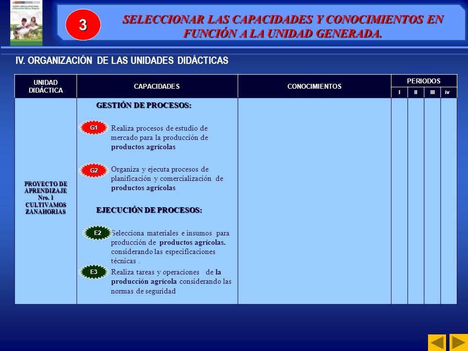 UNIDAD DIDÁCTICA CAPACIDADESCONOCIMIENTOS PERIODOS IIIIIIiv PROYECTO DE APRENDIZAJE Nro.