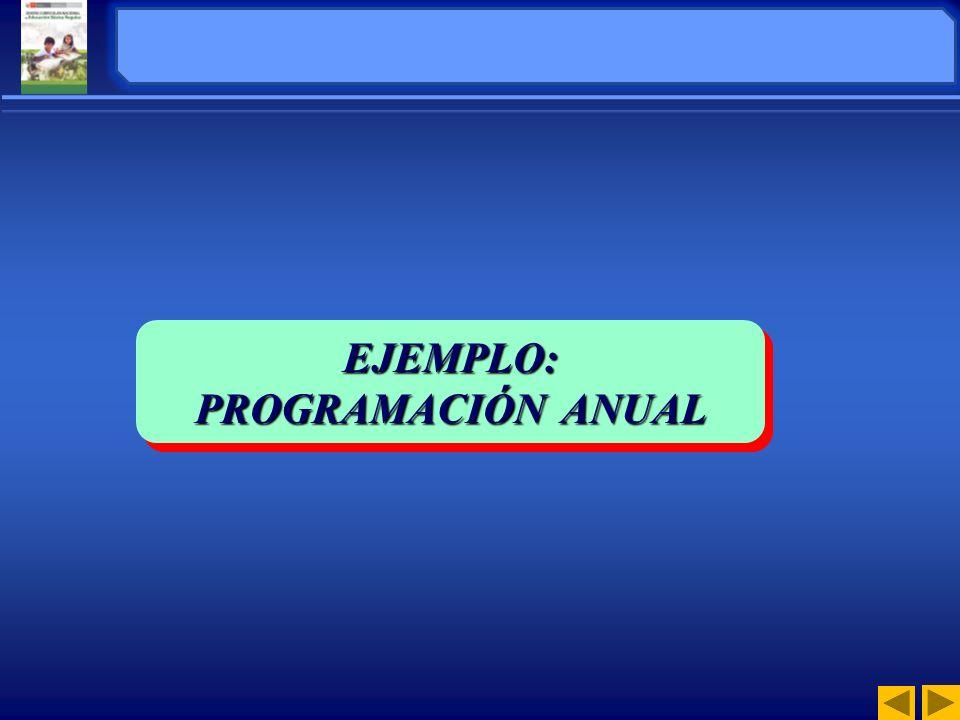 EJEMPLO: ORGANIZACIÓN DE EJEMPLO: PROGRAMACIÓN ANUAL