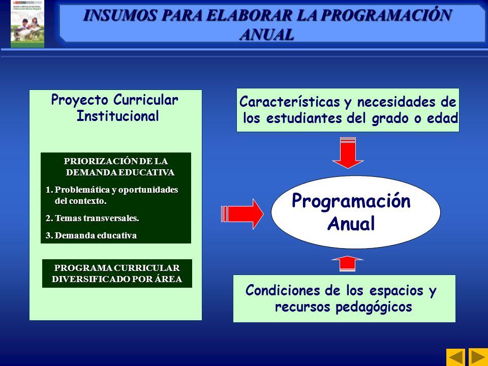 Proyecto Curricular Institucional Programación Anual PRIORIZACIÓN DE LA DEMANDA EDUCATIVA 1.Problemática y oportunidades del contexto.