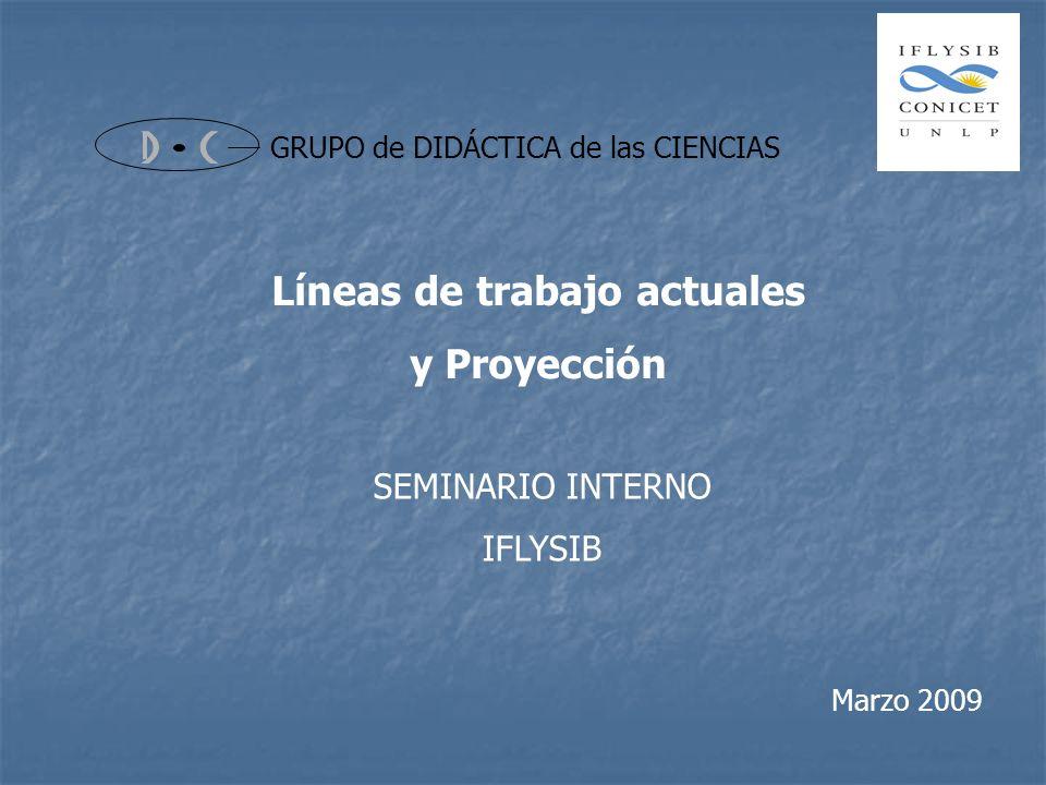 GRUPO de DIDÁCTICA de las CIENCIAS SEMINARIO INTERNO IFLYSIB Líneas de trabajo actuales y Proyección Marzo 2009