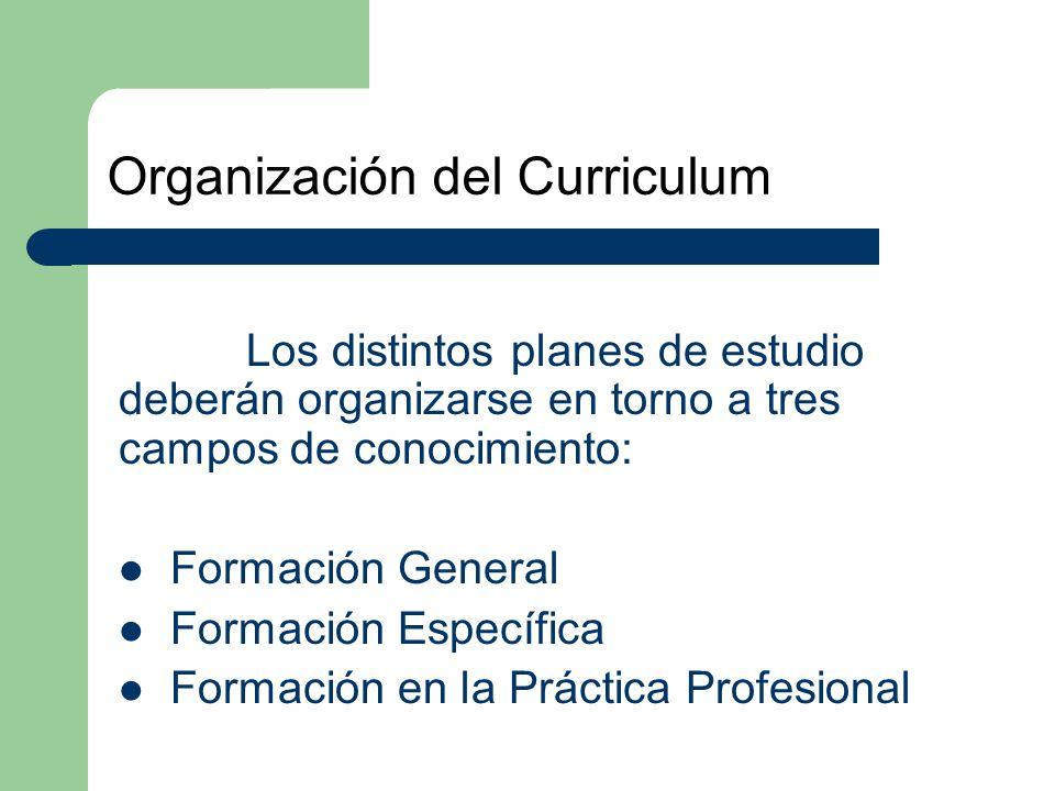 Organización del Curriculum Los distintos planes de estudio deberán organizarse en torno a tres campos de conocimiento: Formación General Formación Específica Formación en la Práctica Profesional