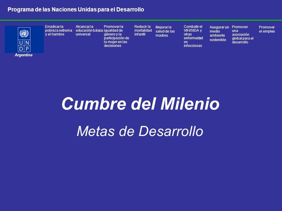 Cumbre del Milenio Metas de Desarrollo Argentina Programa de las Naciones Unidas para el Desarrollo Promover una asociación global para el desarrollo