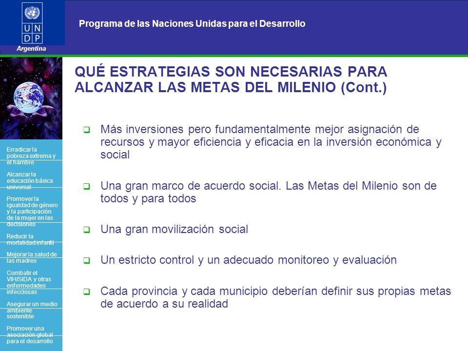 19 Programa de las Naciones Unidas para el Desarrollo Argentina BACK OFFICE QUÉ ESTRATEGIAS SON NECESARIAS PARA ALCANZAR LAS METAS DEL MILENIO (Cont.)