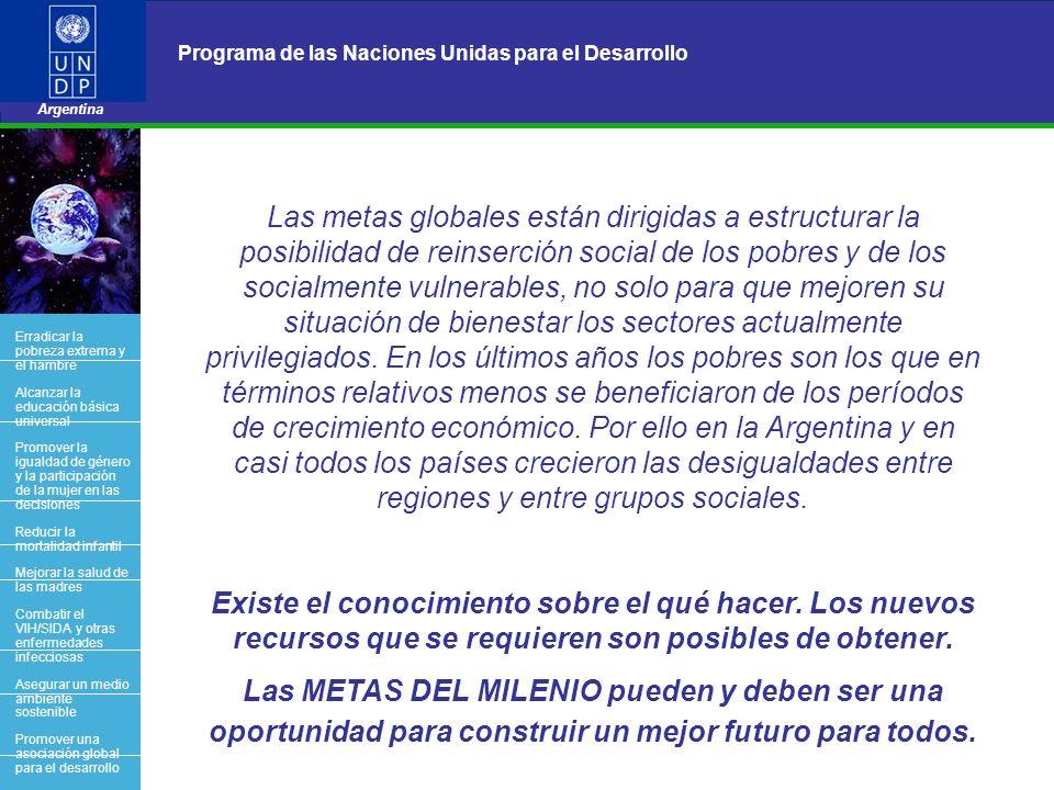 20 Programa de las Naciones Unidas para el Desarrollo Argentina BACK OFFICE Las metas globales están dirigidas a estructurar la posibilidad de reinser