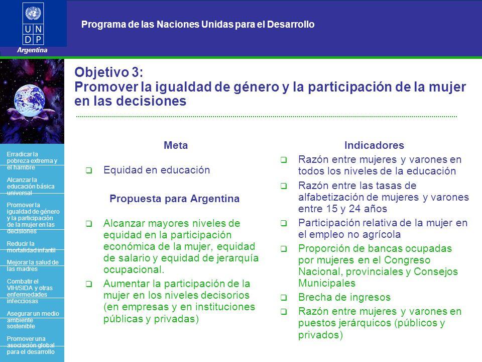7 Programa de las Naciones Unidas para el Desarrollo Argentina BACK OFFICE Objetivo 3: Promover la igualdad de género y la participación de la mujer e