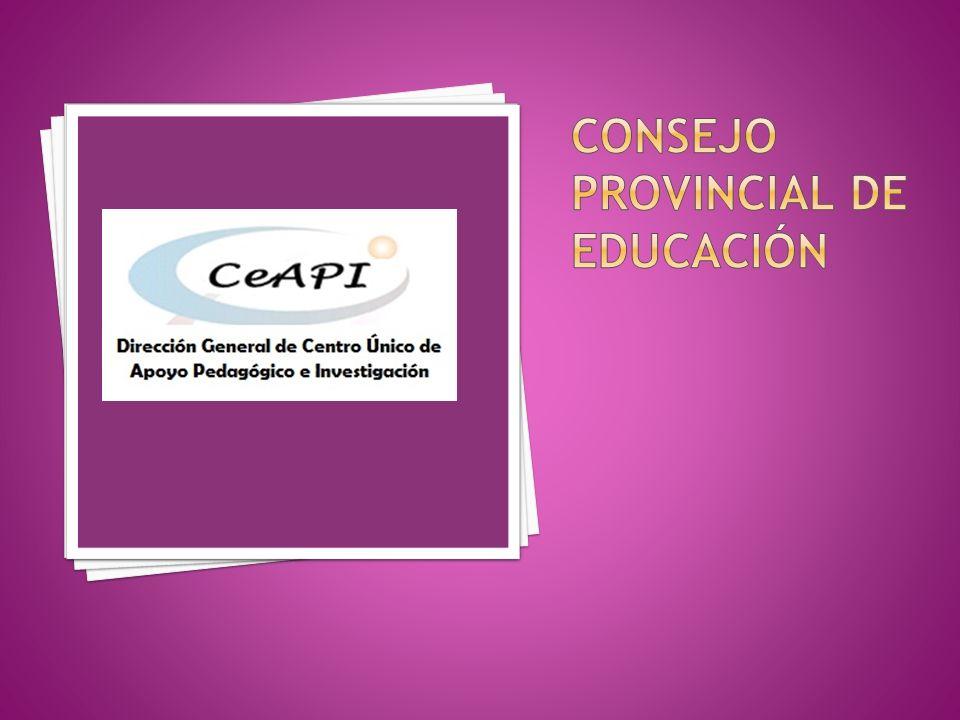 Se prevé la implementación de una plataforma virtual del CeAPI.