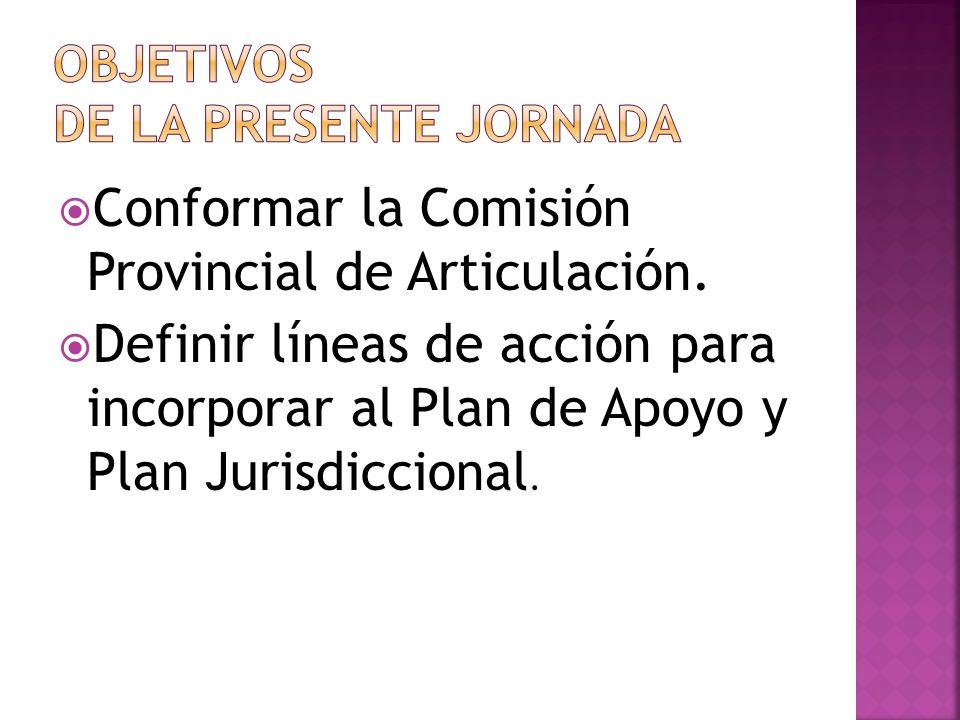 Conformar la Comisión Provincial de Articulación. Definir líneas de acción para incorporar al Plan de Apoyo y Plan Jurisdiccional.