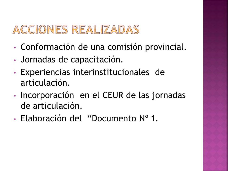 Conformación de una comisión provincial. Jornadas de capacitación. Experiencias interinstitucionales de articulación. Incorporación en el CEUR de las
