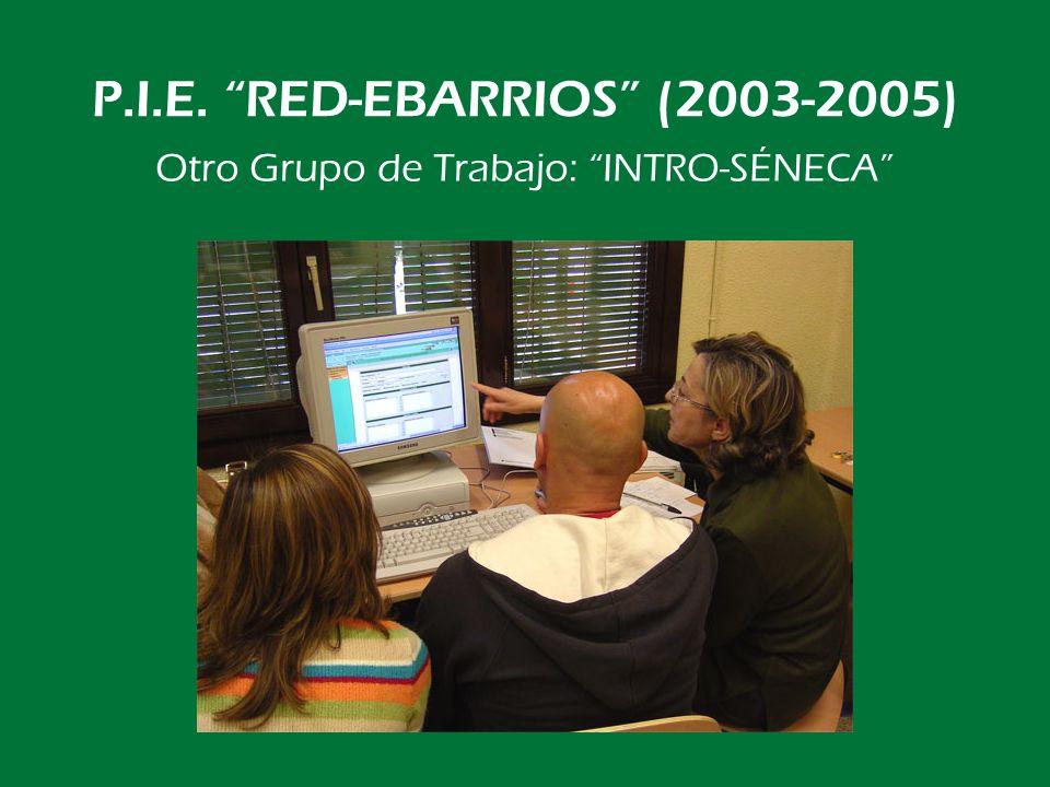 P.I.E. RED-EBARRIOS (2003-2005) Y nuestro escaparate: www.ebarrios.net