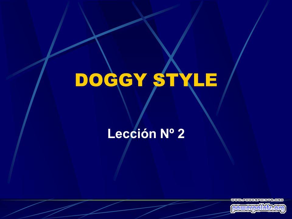 DOGGY STYLE Lección Nº 2