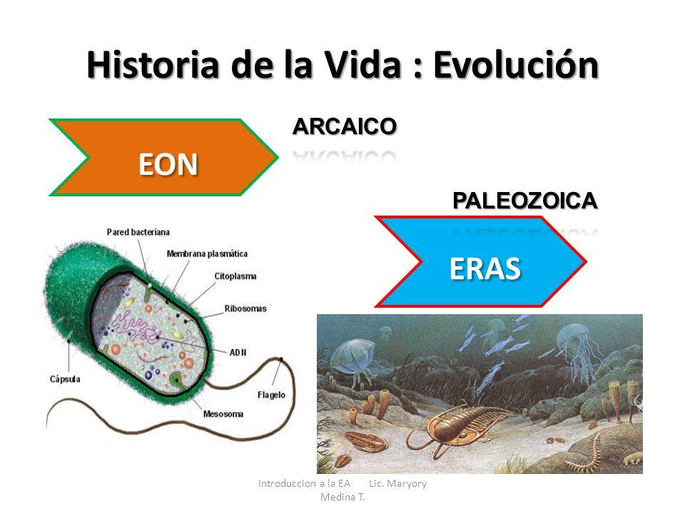 Historia de la Vida : Evolución EON ERAS Introduccion a la EA Lic. Maryory Medina T.