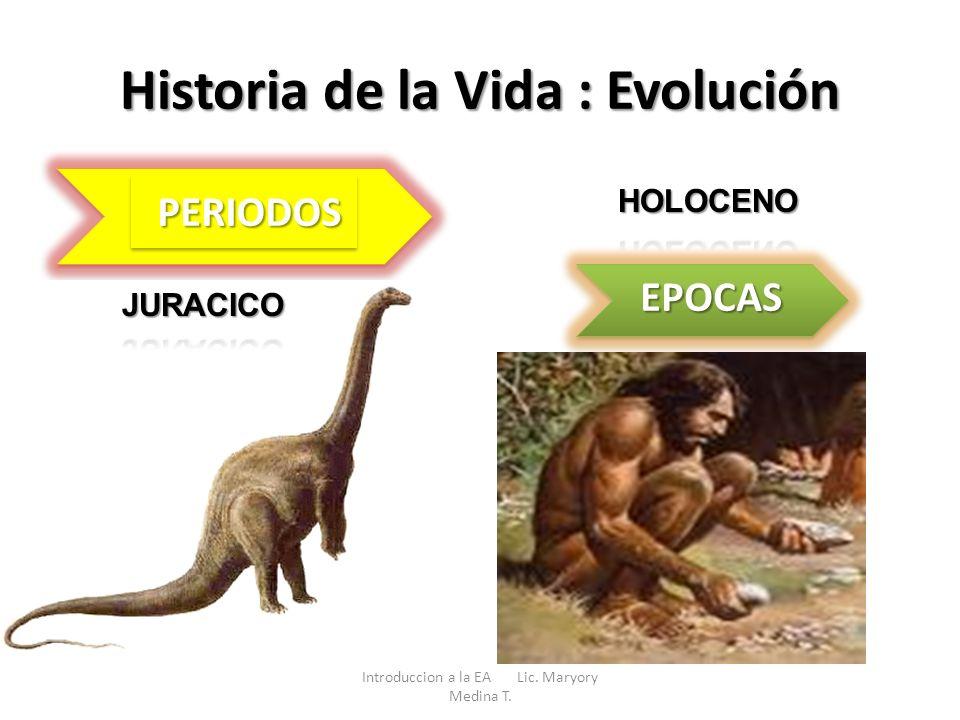 Historia de la Vida : Evolución Introduccion a la EA Lic. Maryory Medina T. EPOCAS PERIODOSPERIODOS